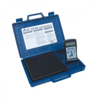 Электронные весы-дозатор ITE WS-055 55 кг